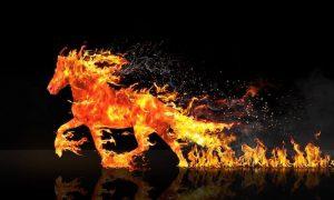 het element vuur