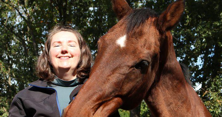 Ademhaling paard controleren