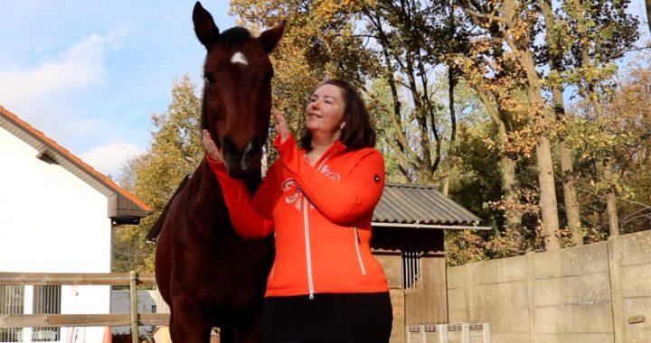 Cursus communiceren met dieren via de Chakra's (online)