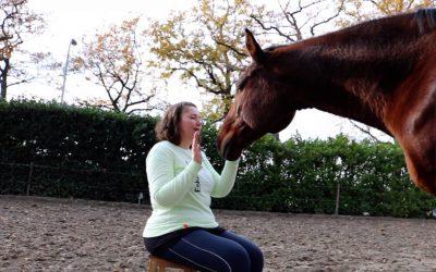 Communiceren met dieren Vervolg