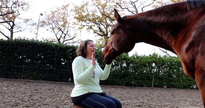 Zelf leren communiceren met dieren